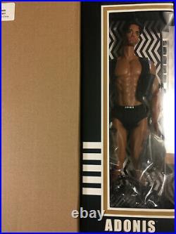 Mizi & Friends Adonis Work Hard Brunette+Gym Boy Blond+1 Fashion set NRFB